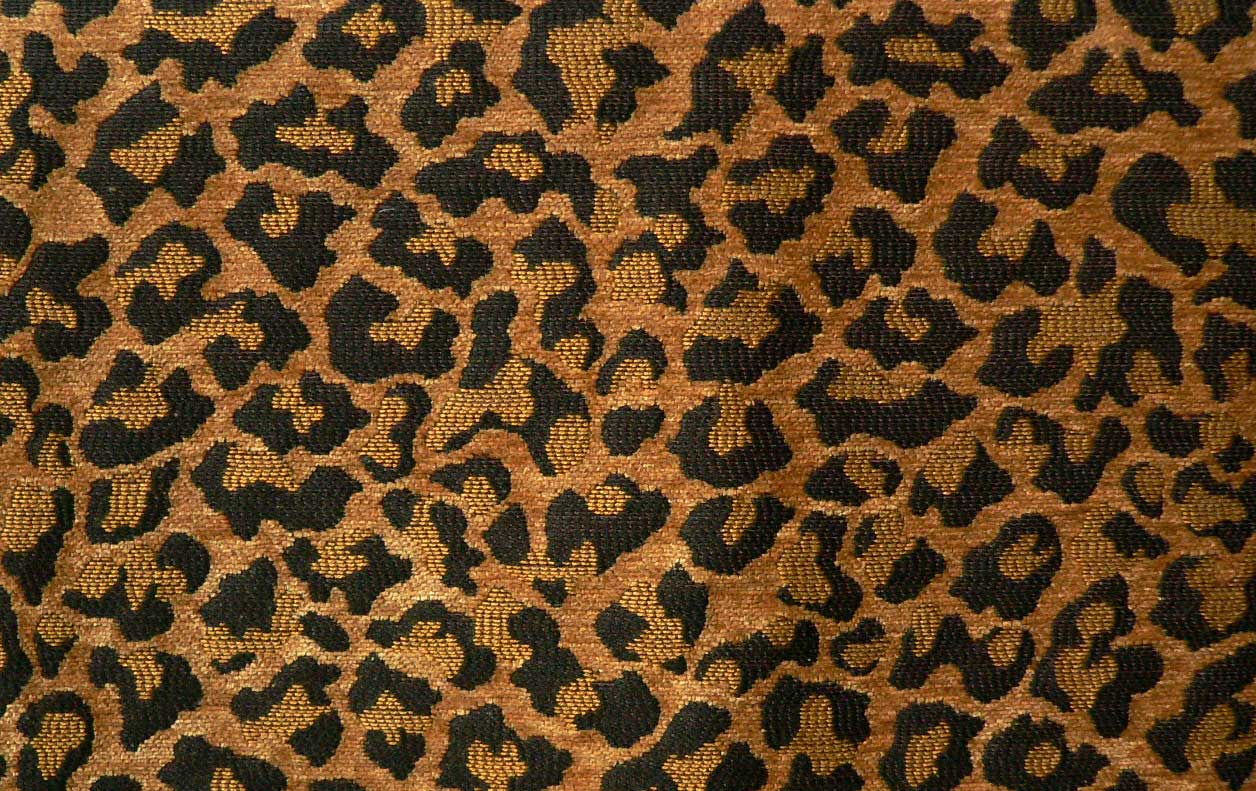 Leopard Fabric Leopard Natural  Best Fabric Store  Online Drapery And