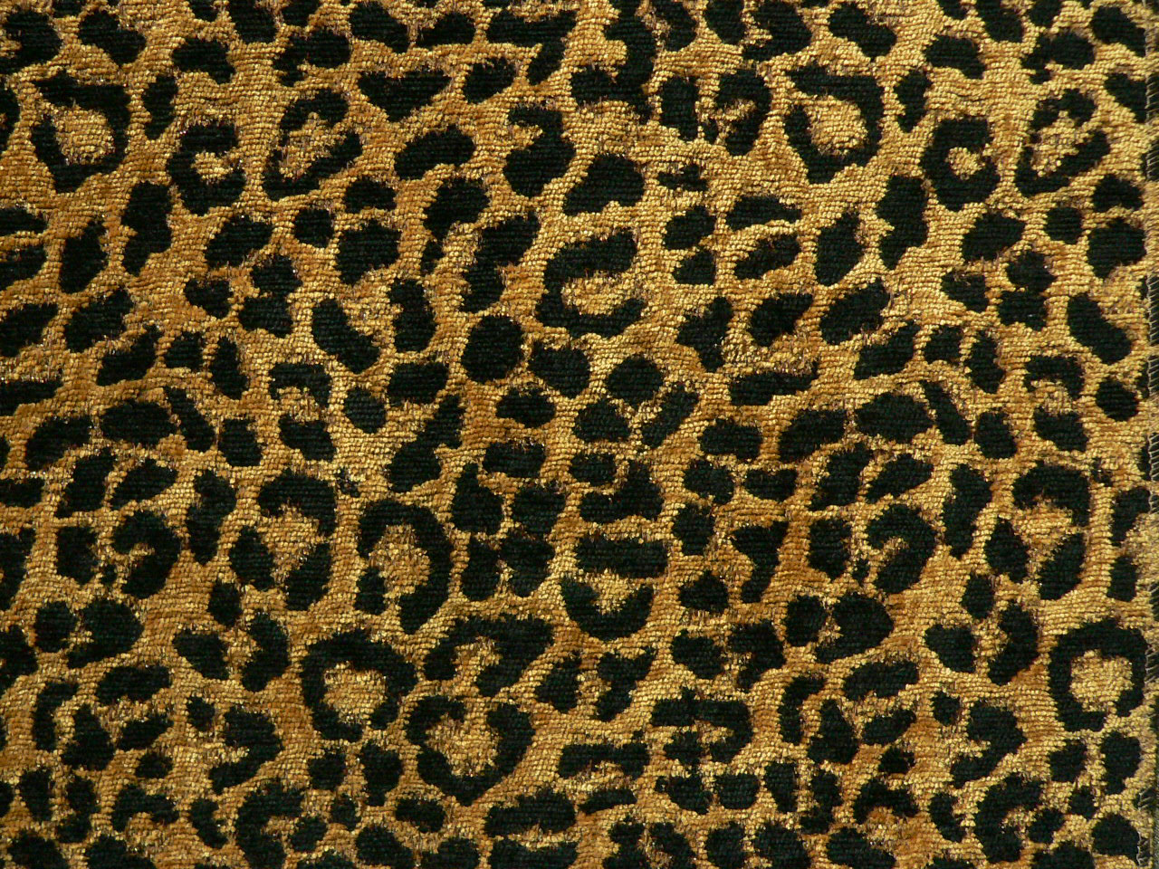 Leopardo Gold Upholstery Fabric Best Fabric Store