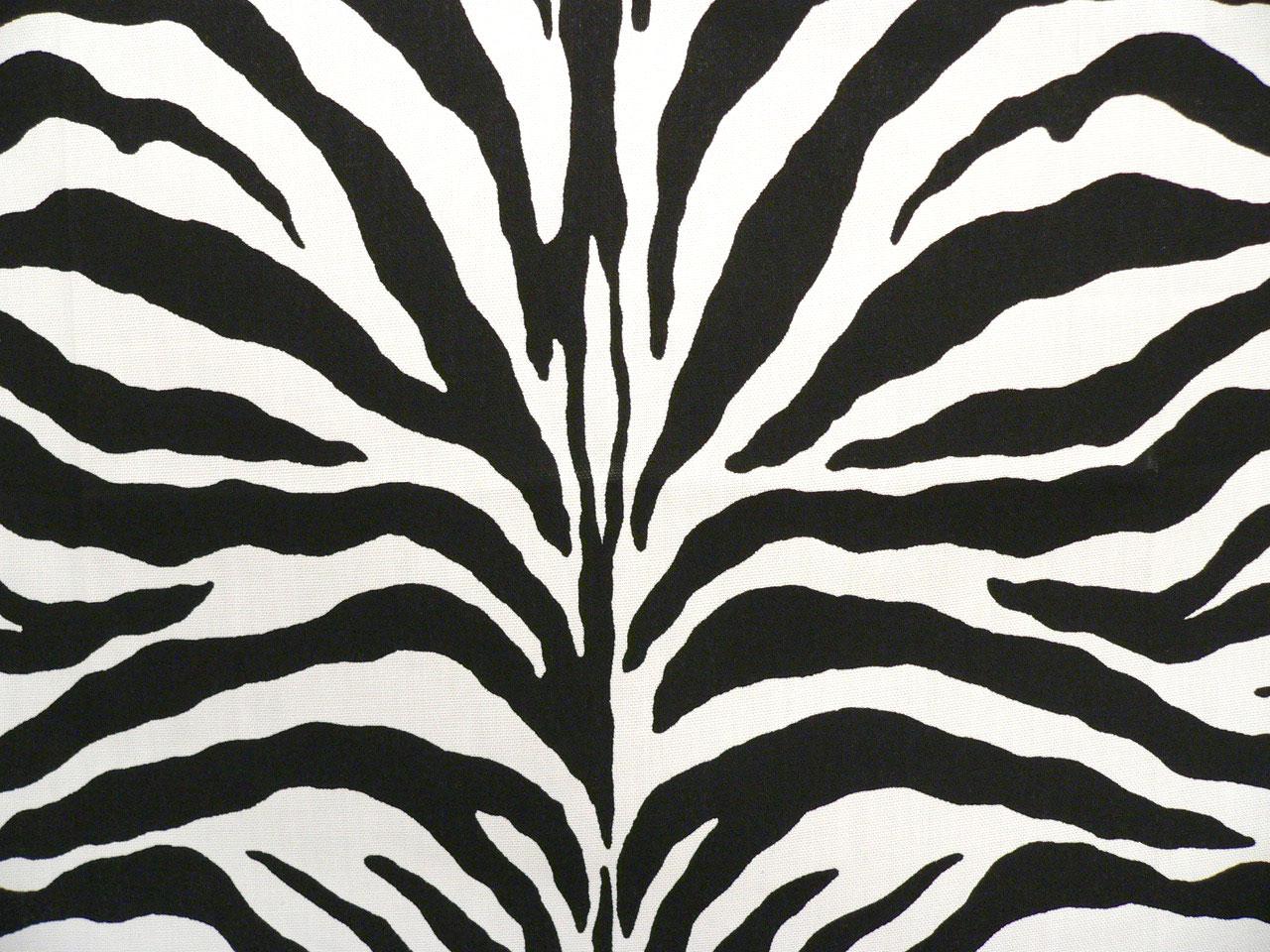 Zebra Black - Indoor/Outdoor | Best Fabric Store | Online Drapery ...