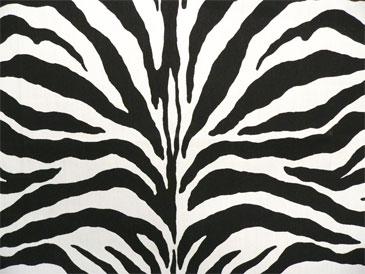 Zebra Black Indoor Outdoor Best Fabric Store